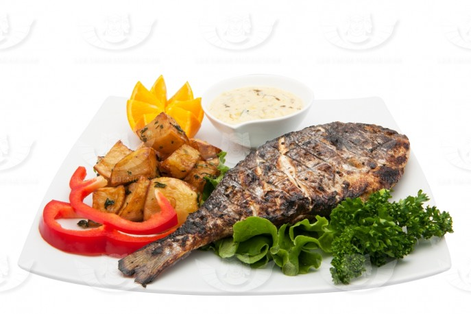 GRILLED GILTHEAD SEABREAM